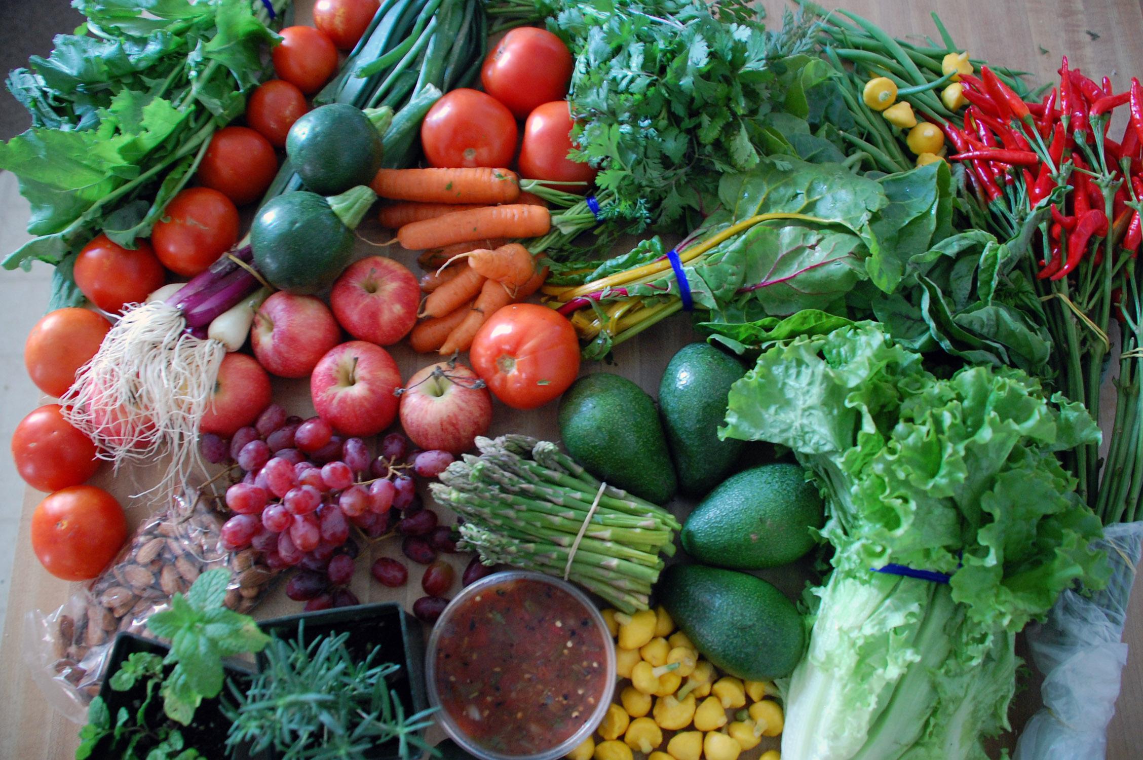 Using Your Garden To Eat Smart Choosing Your Veggies